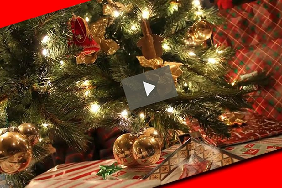 Happy Holidays Video from NWeSource